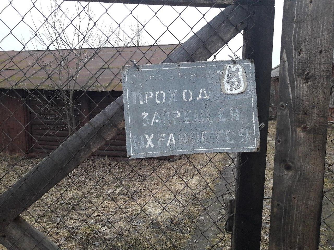 Напряженная неделя для Ржевского отделения Волонтерского поисково-спасательного отряда