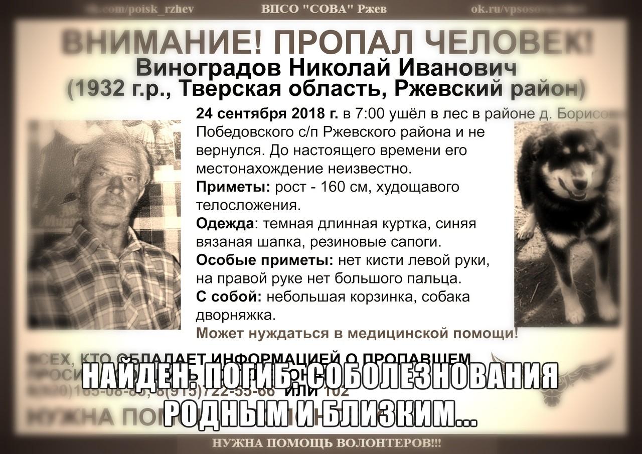 Отчет о поиске Виноградова Н.И.