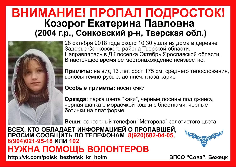 Устанавливается местонахождение девочки, ушедшей из дома в Сонковском районе Тверской области