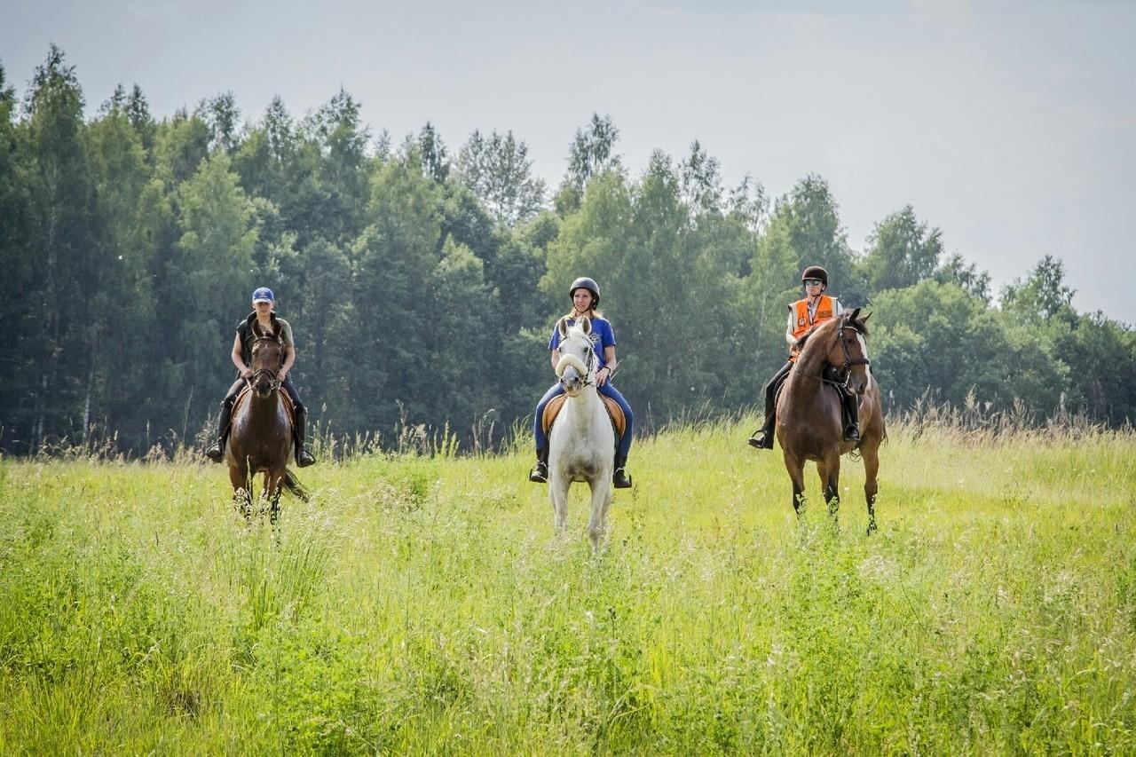 Учения конного подразделения