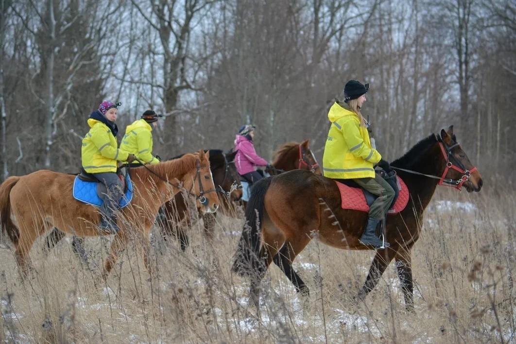 Учения конников в Торжке